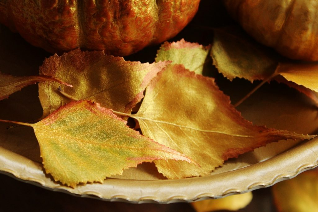 fall decor painted leaves